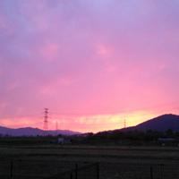 夕焼けの写真です。